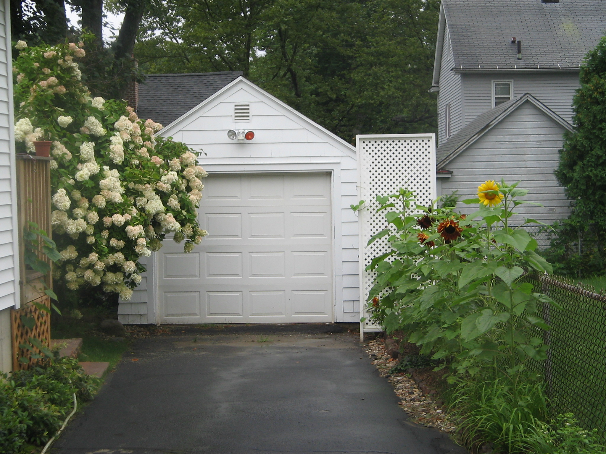 Front View of Driveway